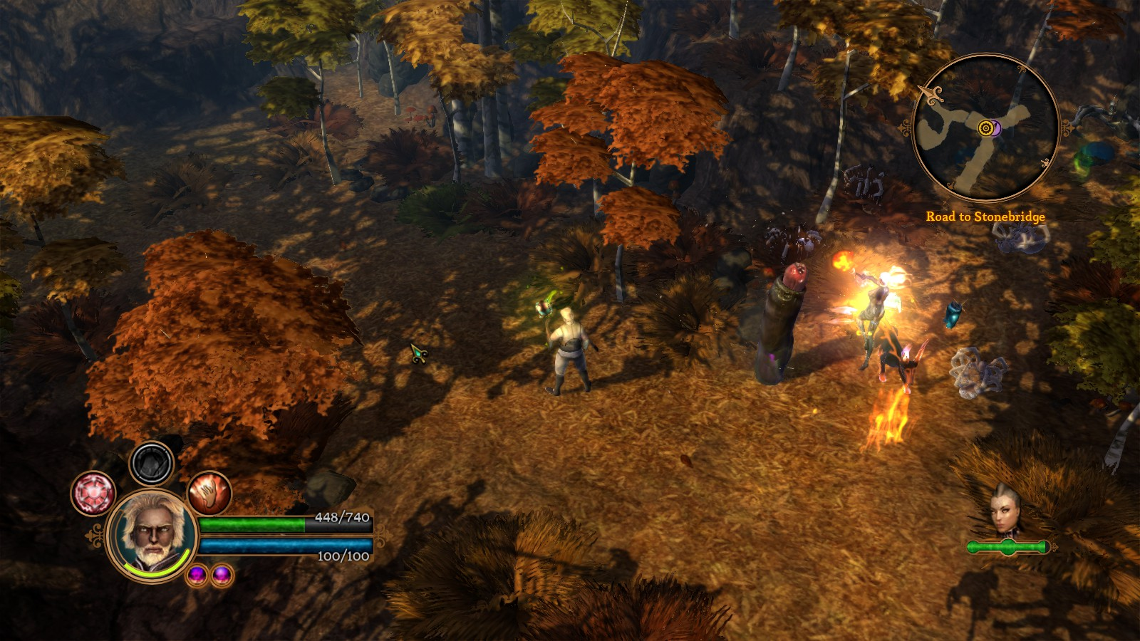 Screenshot for the game Dungeon Siege 3 (2011) PC | RePack by R.G. Mechanics