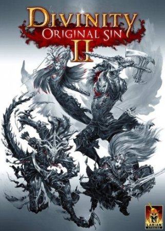 Poster Divinity: Original Sin 2 Early Access (2016)